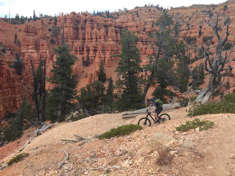 Mountain Biker riding across gravel with red mountains behind them