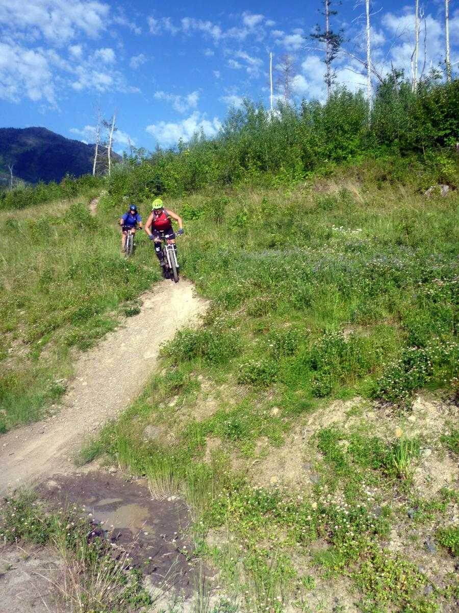 Two people riding mountain bikes down dirt trail on grassy hillside