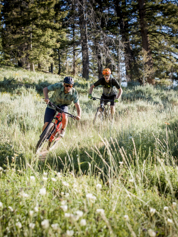 Two mountain bikers riding fast down trail through grass-covered mountain side