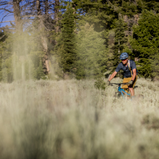 Looking at mountain biker through grass as they ride across grassy field with trees behind them